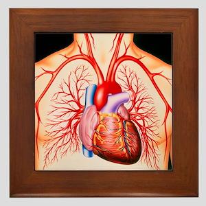 Human heart, artwork - Framed Tile