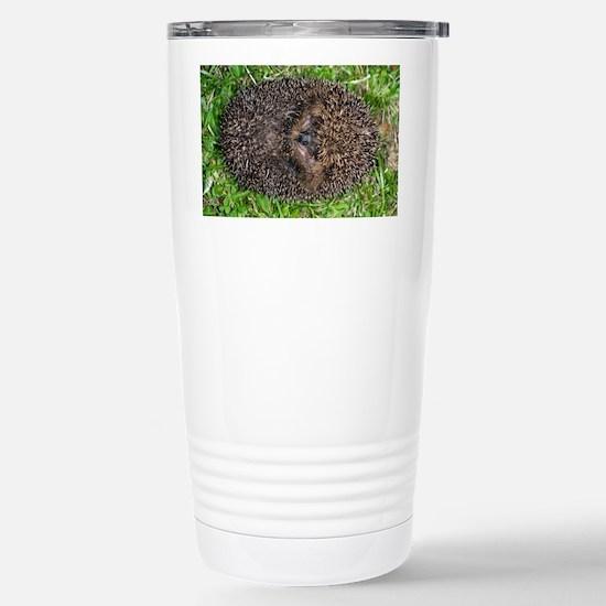 European hedgehog - Stainless Steel Travel Mug