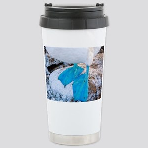 Feet of a blue-footed booby - Stainless Steel Trav