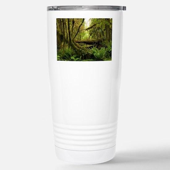 Temperate rainforest - Stainless Steel Travel Mug