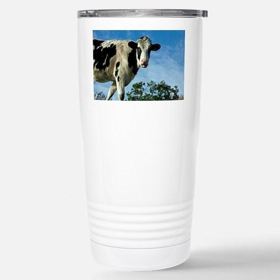 Heifer cow - Stainless Steel Travel Mug