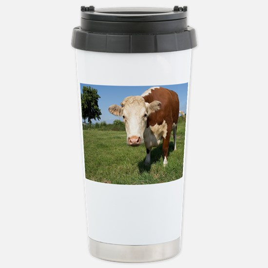 Hereford cow - Stainless Steel Travel Mug