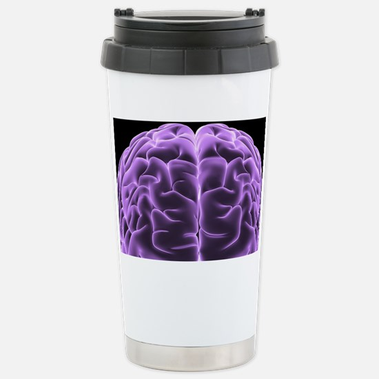 Human brain, computer artwork - Stainless Steel Tr