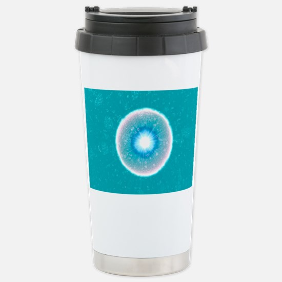 Fertilized egg cell - Stainless Steel Travel Mug
