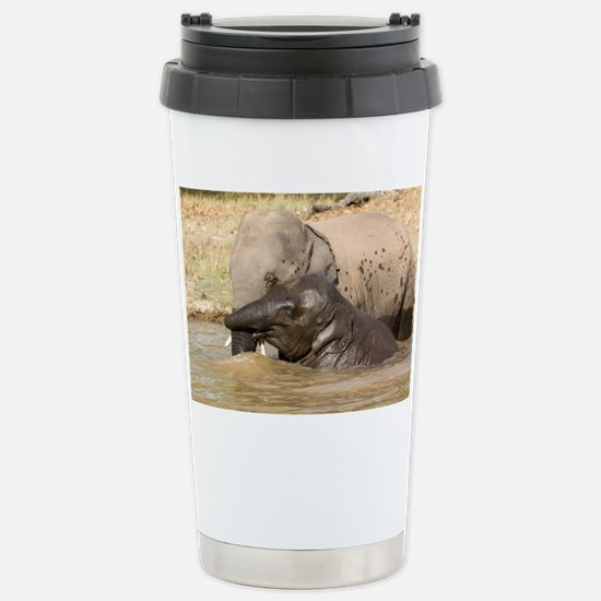 Asian elephants - Stainless Steel Travel Mug