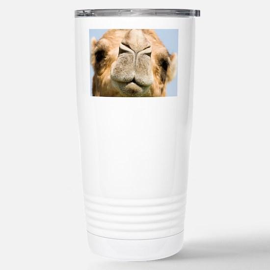 Dromedary camel - Stainless Steel Travel Mug
