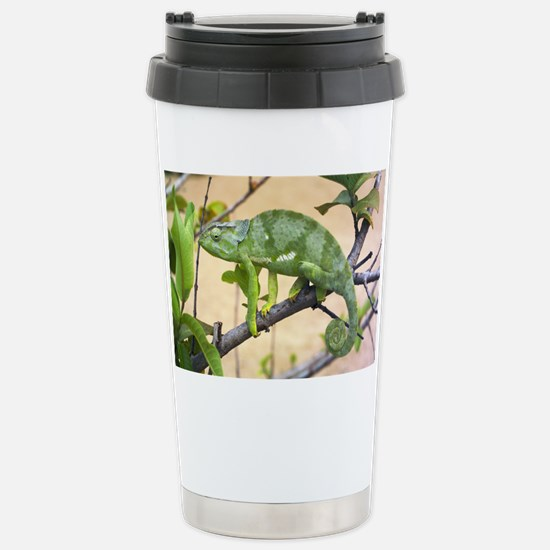 Flap-necked chameleon - Stainless Steel Travel Mug