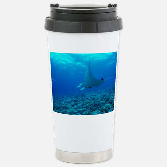 Manta ray - Stainless Steel Travel Mug