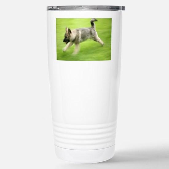 Norwegian elkhound puppy - Stainless Steel Travel