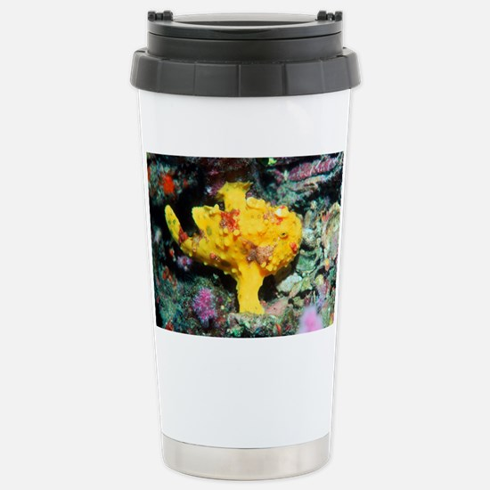 Warty frogfish - Stainless Steel Travel Mug