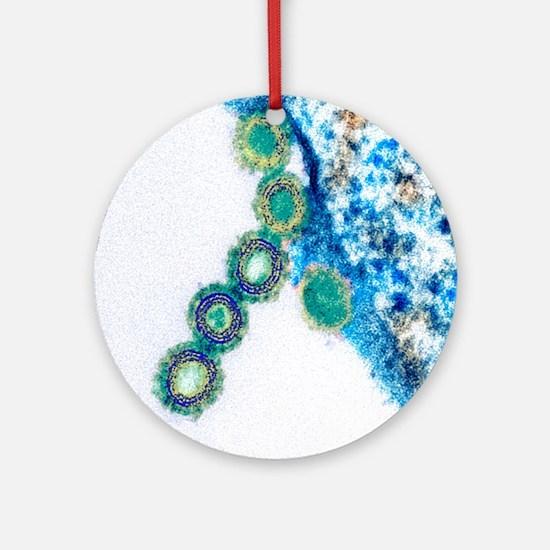 H1N1 swine flu virus, TEM - Round Ornament