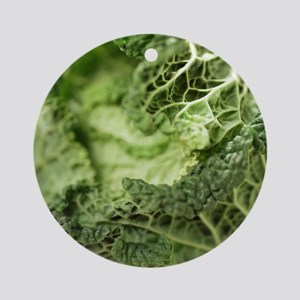 Cabbage leaves - Round Ornament