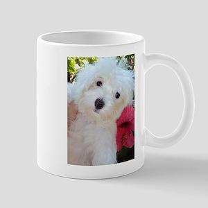 Adorable Ali - Maltese Puppy Mug
