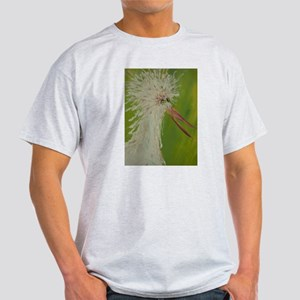 Give your creative spirit wings! Light T-Shirt