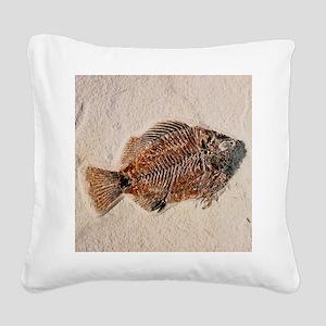 Fossilised fish, Priscacara serata - Square Canvas