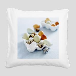 Assortment of eggs - Square Canvas Pillow
