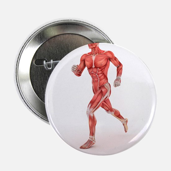 Male muscles, artwork - 2.25' Button (10 pack)