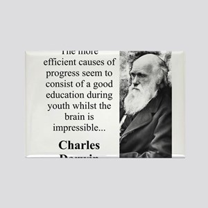 The More Efficient Causes - Charles Darwin Magnets