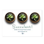 Succulent! #1 Postcards (Package of 8)