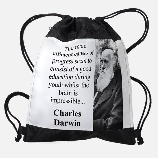 The More Efficient Causes - Charles Darwin Drawstr