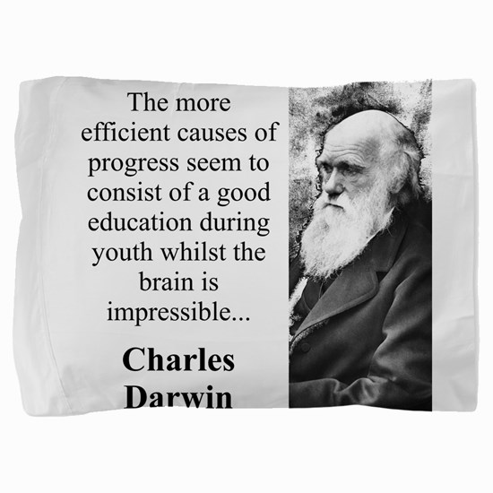 The More Efficient Causes - Charles Darwin Pillow