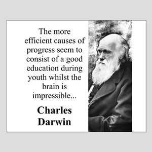 The More Efficient Causes - Charles Darwin Small P