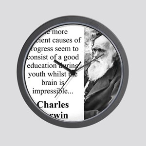 The More Efficient Causes - Charles Darwin Wall Cl