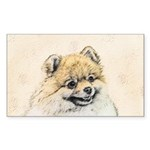 Pomeranian (Orange) Sticker (Rectangle 50 pk)