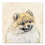 Pomeranian (Orange) Square Car Magnet 3