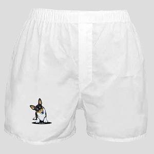 KiniArt Tricolor Corgi Boxer Shorts