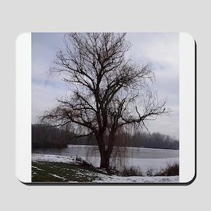 Peaceful Willow Tree Mousepad