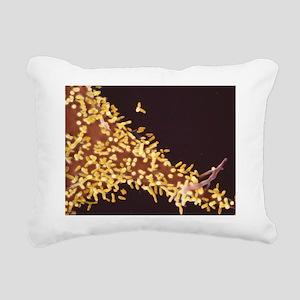 Rabies virus, SEM - Rectangular Canvas Pillow