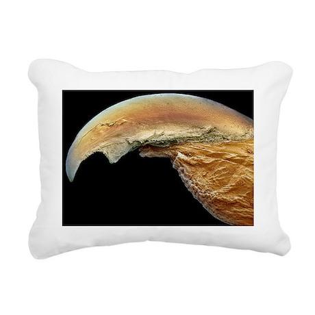 Lovebird's claw, SEM - Rectangular Canvas Pillow