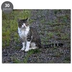 Purr-fectly Posed Puzzle