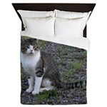Purr-fectly Posed Queen Duvet