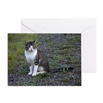 Purr-fectly Posed Greeting Card