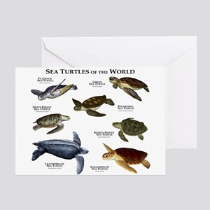 Sea Turtles of the World Greeting Card