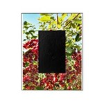 Large Pin Chokecherries Summer 2020 Picture Frame