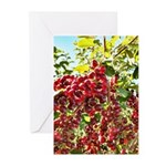 Large Pin Chokecherries Summer 2020 Greeting Cards