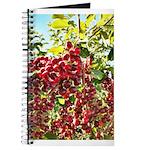 Large Pin Chokecherries Summer 2020 Notebook