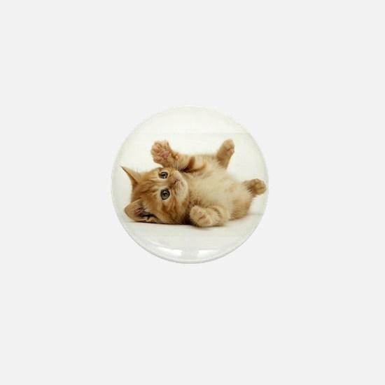 Orange kitten Mini Button