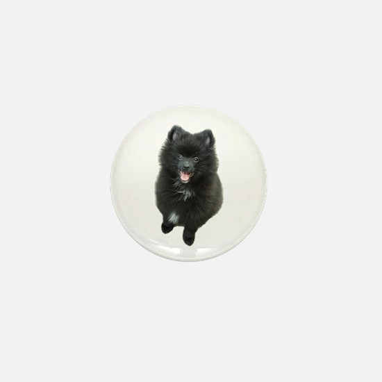 Adorable Black Pomeranian Puppy Dog Mini Button