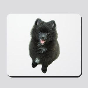 Adorable Black Pomeranian Puppy Dog Mousepad