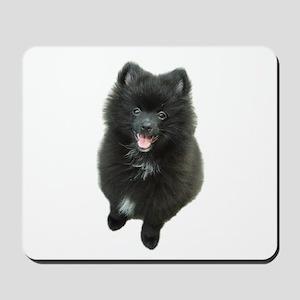 Adorable Black Pomeranian Puppy Dog Mousepad