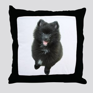 Adorable Black Pomeranian Puppy Dog Throw Pillow