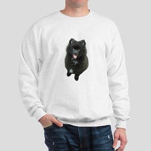 Adorable Black Pomeranian Puppy Dog Sweatshirt