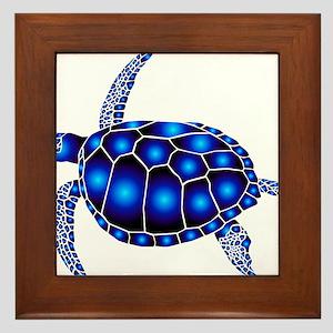 sea turtle ocean marine beach endangered species F