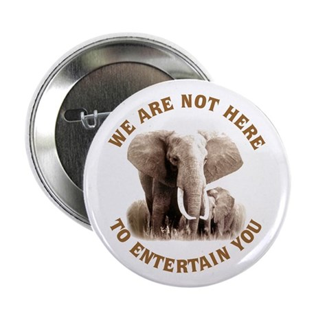"""We Are Not Here 2.25"""" Button (10 pack)"""