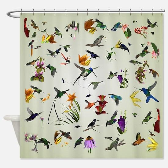 Hummingbirds of the Americas Shower Curtain