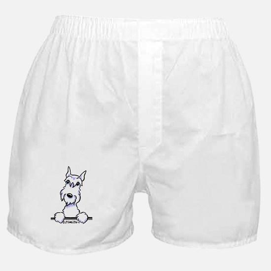 White Schnazuer Paws Up Boxer Shorts